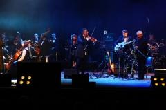 Grechuta Festival (12)