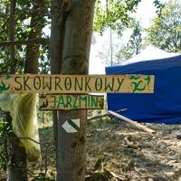 Skowronkowy Jarzmin 2020, foto: Andrzej Wodziński
