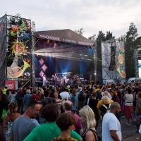 Pannonica Folk Festival 2019